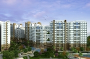 3 BHK Apartments for Sale Near Big Bazaar Area