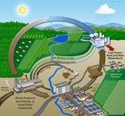 Biomass Oil Purifier