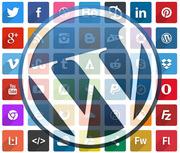 WordPress Social Icon Plugin
