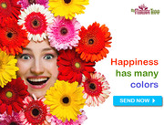 Outstandingly Send Online Flowers to Cuttack