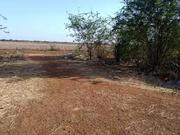 Plot for sale in Patia