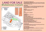 25520 sqft LAND FOR SALE NEAR OCEN WORLD & AMRAPALLI RESORT